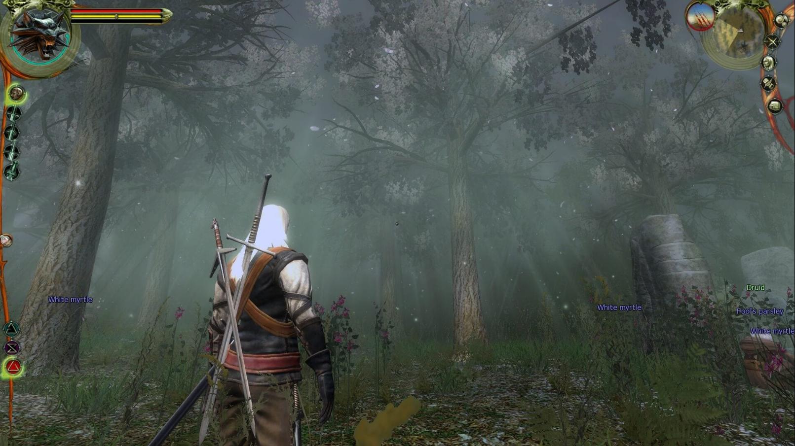 The Witcher 1 Baixar