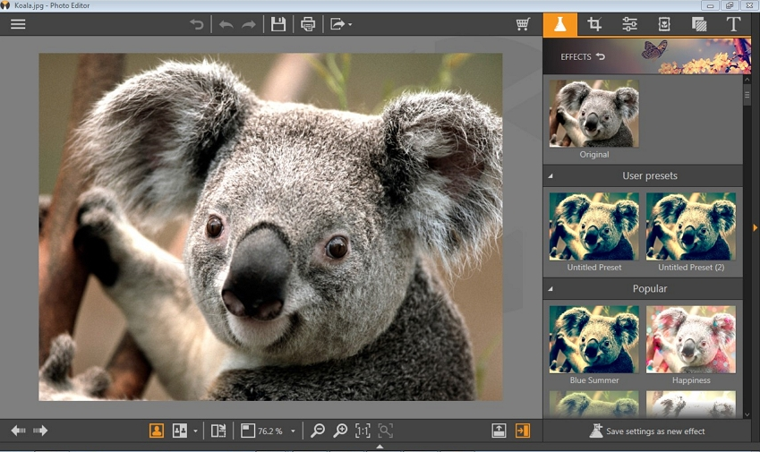 Photo Editing Software Baixar